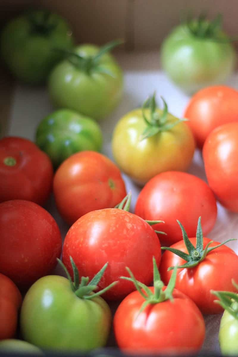 Fresh tomatoes in a box.