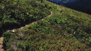 Backpacking the Glacier Peak Wilderness - Spider Meadow, Buck Creek Pass Loop