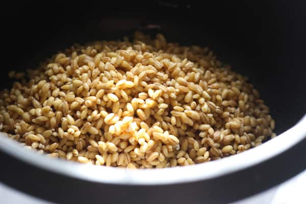 Barley in a rice cooker.